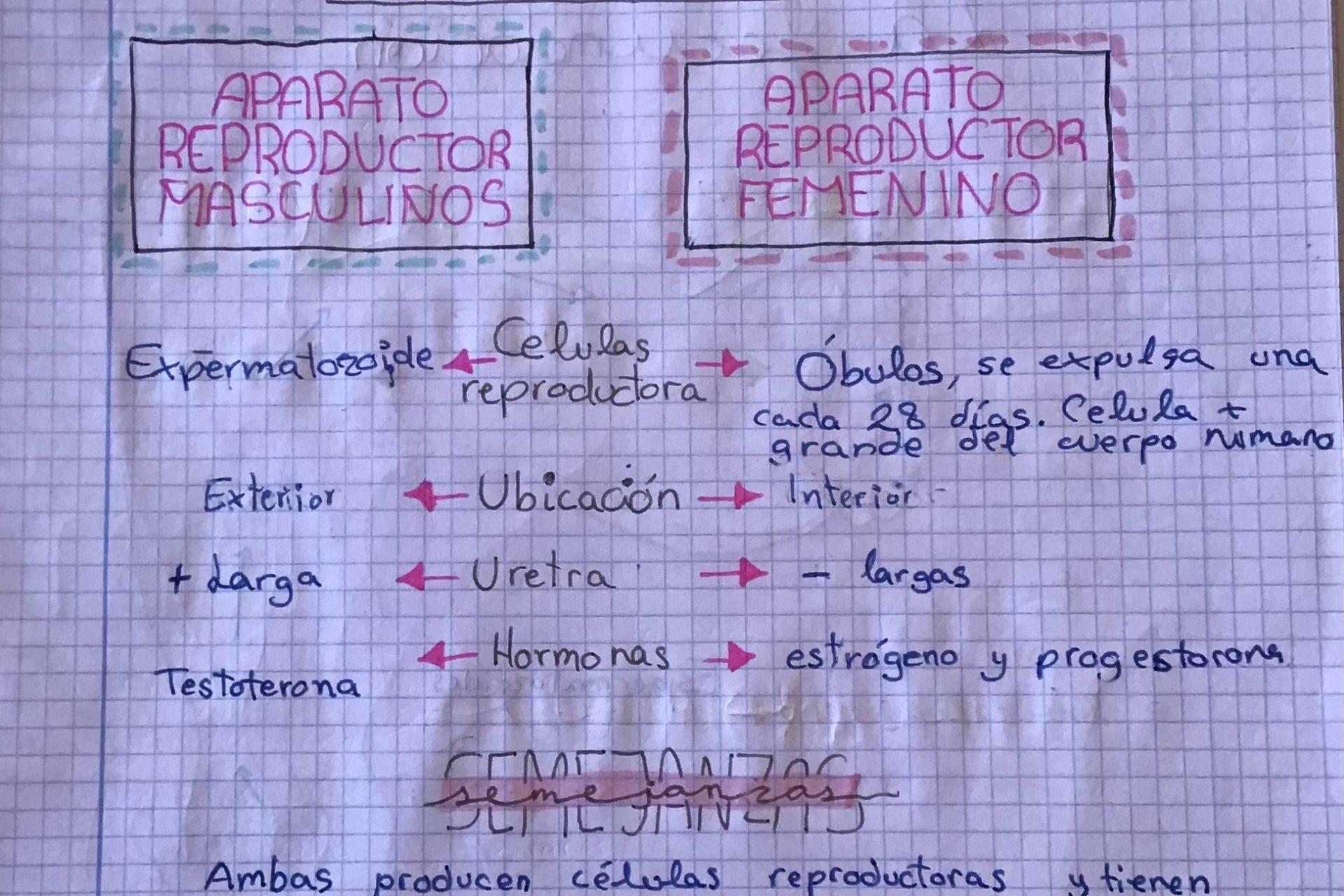 los_engranajes_0